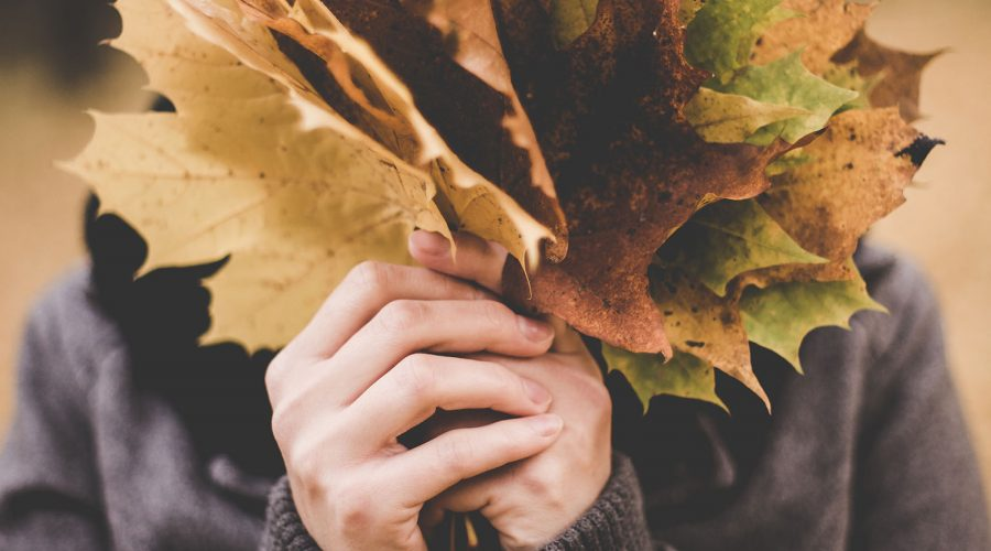Autumn: A Season Of Falling Leaves
